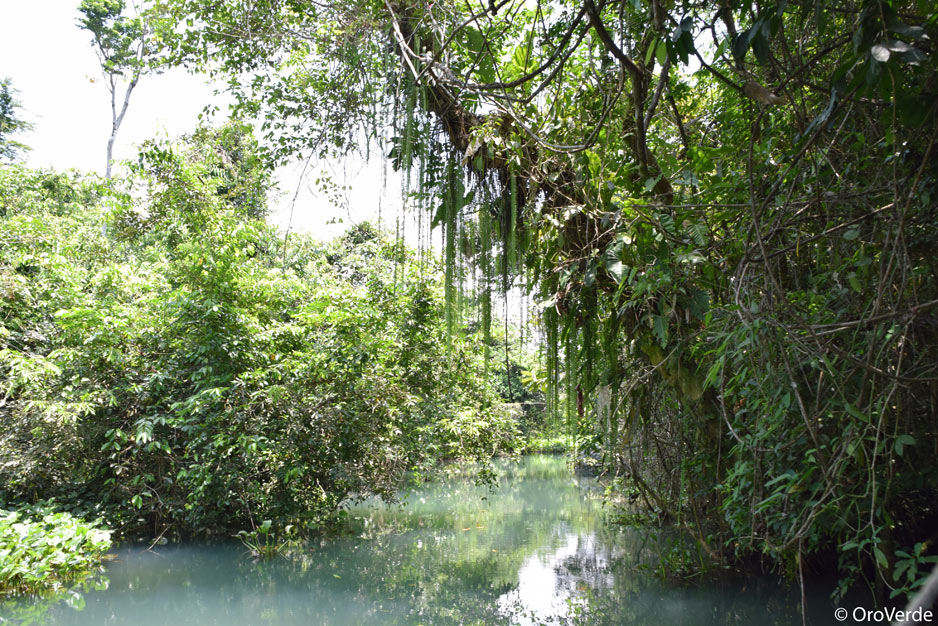 Bocas del Polochic Fluss